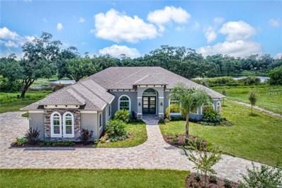 424 Two Lakes Lane, Eustis, FL 32726 - MLS#: G4850924