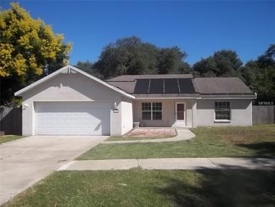 33922 Silver Pine Drive, Leesburg, FL 34788 - MLS#: G4851669