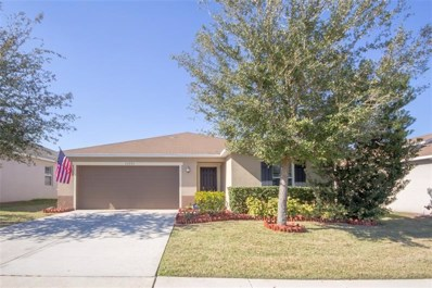 13551 Pitanga Street, Clermont, FL 34711 - #: G4851741
