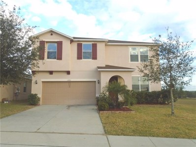 13705 Laranja Street, Clermont, FL 34711 - #: G4851859