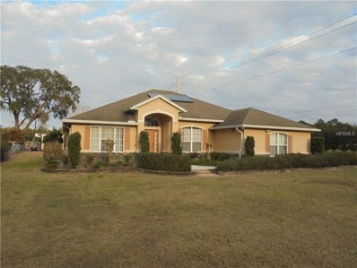 33408 Shady Acres Road, Leesburg, FL 34788 - #: G4852760