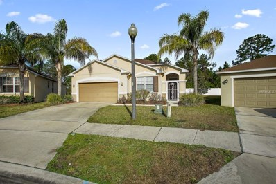 1713 Strathmore Circle, Mount Dora, FL 32757 - MLS#: G4852855