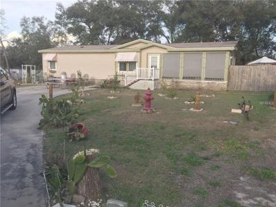 Fruitland Park, FL 34731