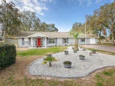 2036 Spring Lake Road, Fruitland Park, FL 34731 - MLS#: G4853161