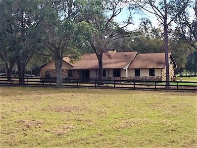 3210 Marion County Road, Weirsdale, FL 32195 - MLS#: G4853362