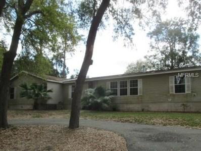 322 Griffin View Drive, Lady Lake, FL 32159 - MLS#: G4853959
