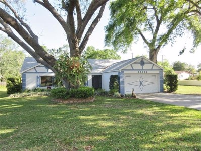 13711 Berkshire Court, Grand Island, FL 32735 - MLS#: G4854730