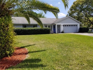 4200 Dora Wood Drive, Mount Dora, FL 32757 - MLS#: G4854867