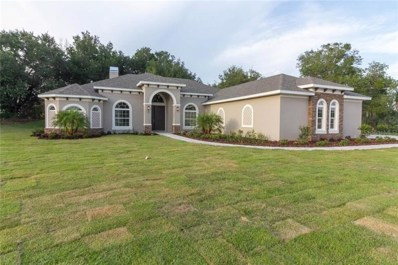 323 Two Lakes Lane, Eustis, FL 32726 - #: G4855147
