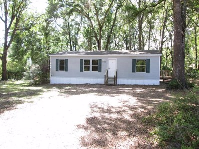 11428 Cr 683B, Webster, FL 33597 - MLS#: G4855186