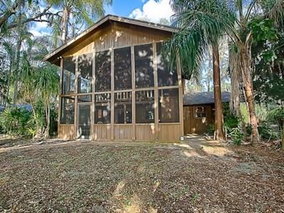 10101 Lake Louisa Road, Clermont, FL 34711 - MLS#: G4855266