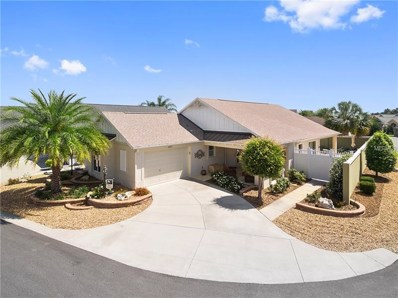 1035 Ibises Court, The Villages, FL 32162 - MLS#: G5000565