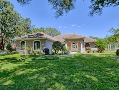 592 Dowling Circle, Lady Lake, FL 32159 - MLS#: G5000943