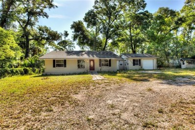 31130 Westward Ho Avenue, Sorrento, FL 32776 - MLS#: G5001129