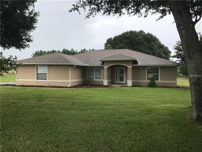 9185 County Road 128C, Wildwood, FL 34785 - MLS#: G5001490
