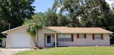 4181 Lake Eleanor Drive, Mount Dora, FL 32757 - MLS#: G5001838
