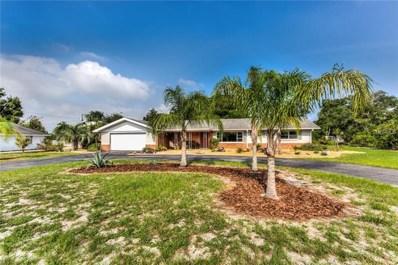 1325 Holly Drive, Mount Dora, FL 32757 - MLS#: G5002274