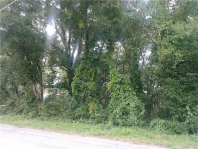 Lot 33 & 34 Sackamaxon Drive, Mount Plymouth, FL 32776 - MLS#: G5002520