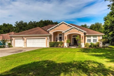30947 Top Of The Hill Drive, Mount Dora, FL 32757 - MLS#: G5002525