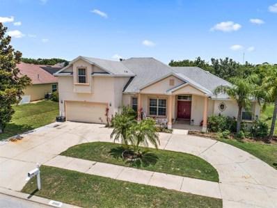 12020 Still Meadow Drive, Clermont, FL 34711 - MLS#: G5002566