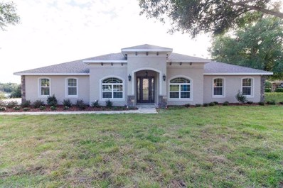 212 Two Lakes Lane, Eustis, FL 32726 - MLS#: G5002860