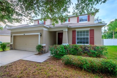3251 Oak Brook Lane, Eustis, FL 32736 - MLS#: G5003166