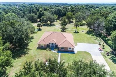 324 Tomato Hill Road, Leesburg, FL 34748 - MLS#: G5003504