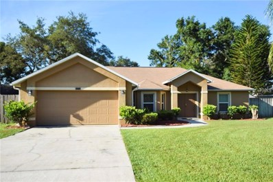11118 Autumn Wind Loop, Clermont, FL 34711 - MLS#: G5003554