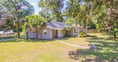 205 E Fountain Street, Fruitland Park, FL 34731 - MLS#: G5003859