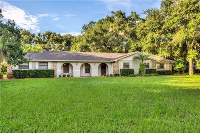 707 E Hilltop Street, Fruitland Park, FL 34731 - MLS#: G5004258