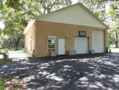 5856 Se 53RD Lane, Center Hill, FL 33514 - MLS#: G5004321