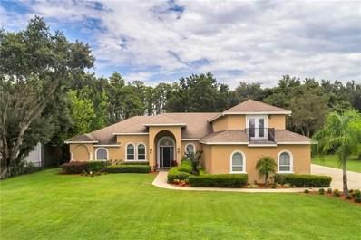 7919 Florida Boys Ranch Road, Groveland, FL 34736 - MLS#: G5004335