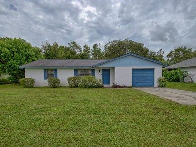 11 Lonesome Pine Trail, Yalaha, FL 34797 - MLS#: G5004501