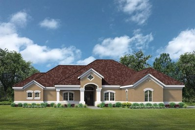 Lot C21 Sawgrass Run UNIT Lot C21, Tavares, FL 32778 - MLS#: G5004835