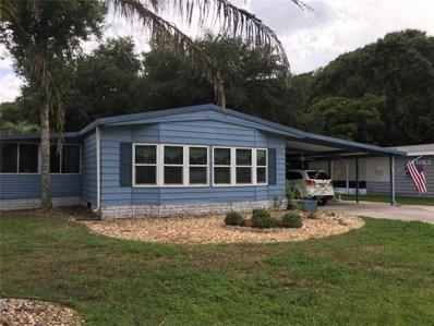 802 Robin Lane, Wildwood, FL 34785 - MLS#: G5004946
