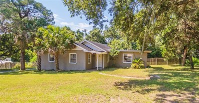 205 E Fountain Street, Fruitland Park, FL 34731 - MLS#: G5005809