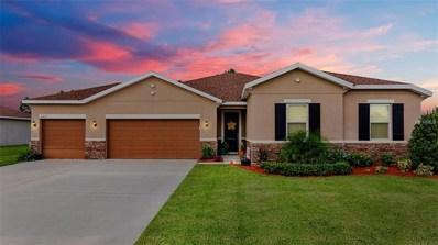 11219 Scenic Vista Drive, Clermont, FL 34711 - MLS#: G5005841