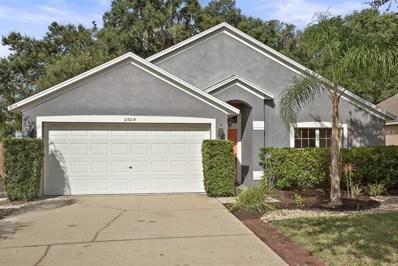 25215 Ironwedge Drive, Sorrento, FL 32776 - MLS#: G5006456