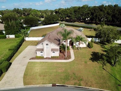 19017 Park Place Boulevard, Eustis, FL 32736 - MLS#: G5006481