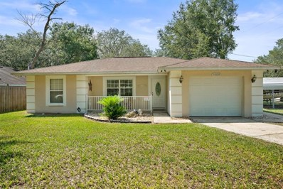 40129 Oakridge Drive, Lady Lake, FL 32159 - MLS#: G5006489