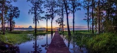 10412 Shadow Oak Trail, Clermont, FL 34711 - MLS#: G5006534