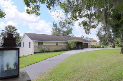 41629 Silver Drive, Umatilla, FL 32784 - MLS#: G5006575