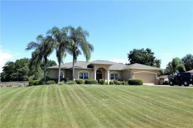 5300 Green Briar Drive, Lady Lake, FL 32158 - MLS#: G5006587