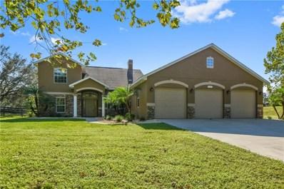 4307 Britt Road, Mount Dora, FL 32757 - MLS#: G5006591