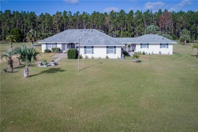 37911 Felkins Road, Leesburg, FL 34788 - MLS#: G5006691