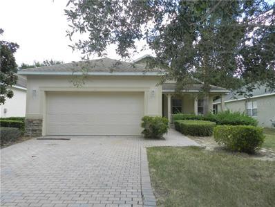 113 Flame Vine Way, Groveland, FL 34736 - MLS#: G5006710