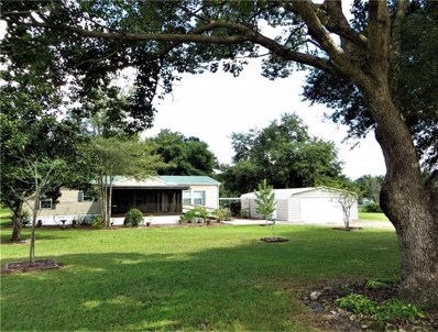 17685 SE 132ND Court, Weirsdale, FL 32195 - #: G5006782