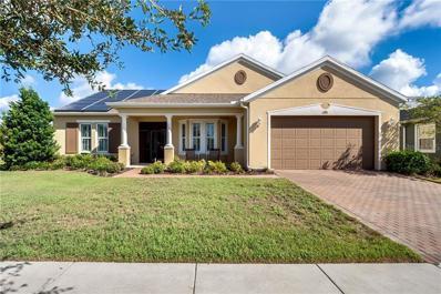 315 Salt Marsh Lane, Groveland, FL 34736 - MLS#: G5006800
