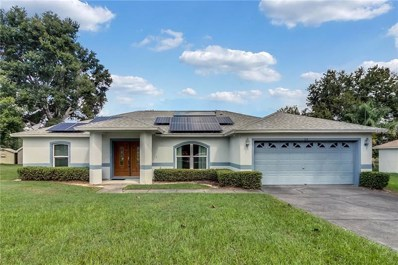 315 Country Lakes Circle, Groveland, FL 34736 - MLS#: G5007025