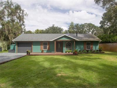 12041 Browns Canal Dr, Clermont, FL 34711 - MLS#: G5007325